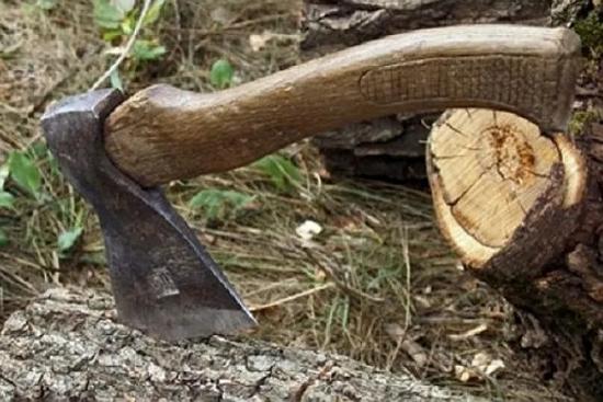 Прокурором Перечинського відділу Ужгородської місцевої прокуратури погоджено підозру 29 та 26-річним мешканцям Березнянщини у незаконній порубці дерев (ч. 2 ст. 246 КК України).