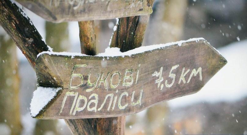 Працівники Ужанського національного парку не пускають на робоче місце нового голову після того, як Міністерство енергетики та захисту довкілля звільнило попереднього через завдання 2,3 млн грн збитків