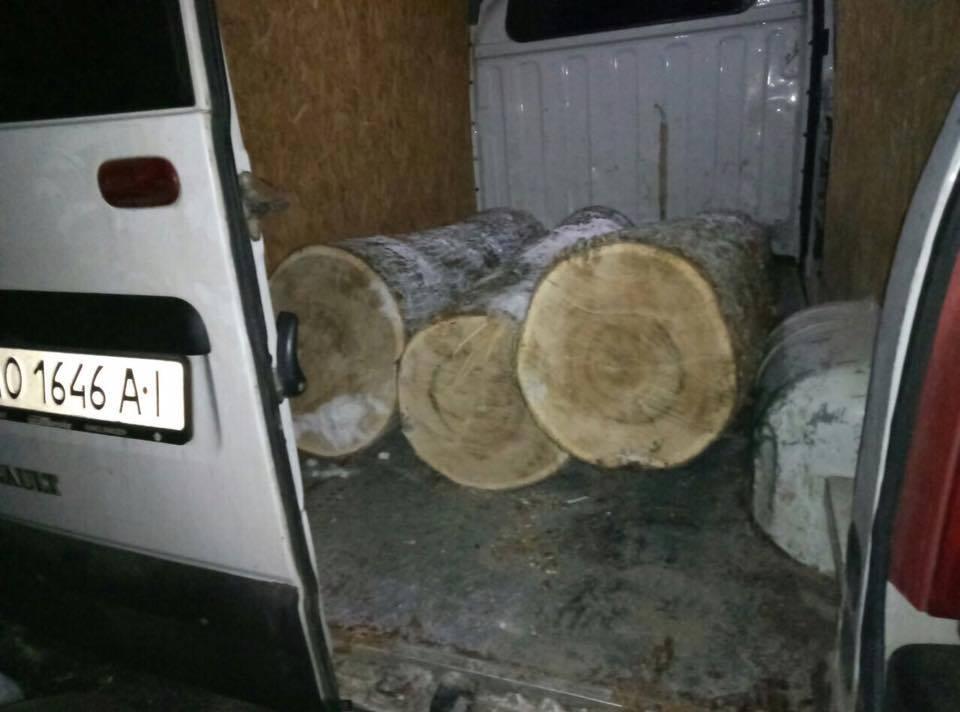 На Закарпатті лісоруби втікали від працівників лісової охорони по півметровим заметам