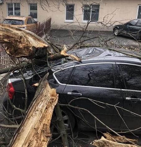 Україну накрили сильні вітри і урагани. Вони зривають дахи з заводів і лікарень, падають дерева, трощать автомобілі і вбивають людей.