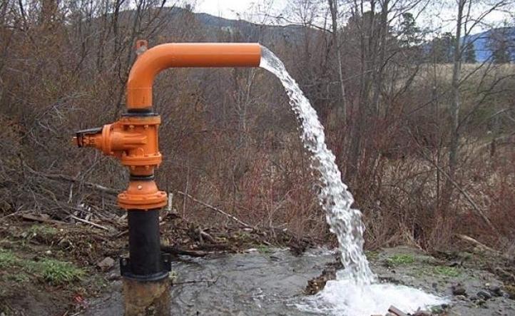 Про це повідомили у Державній екологічній інспекції у Закарпатській області.