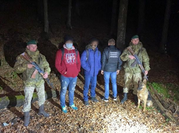 Нелегальних мігрантів, які мали на меті незаконно перетнути кордон з Румунією, затримали учора ввечері військовослужбовці Мукачівського загону.