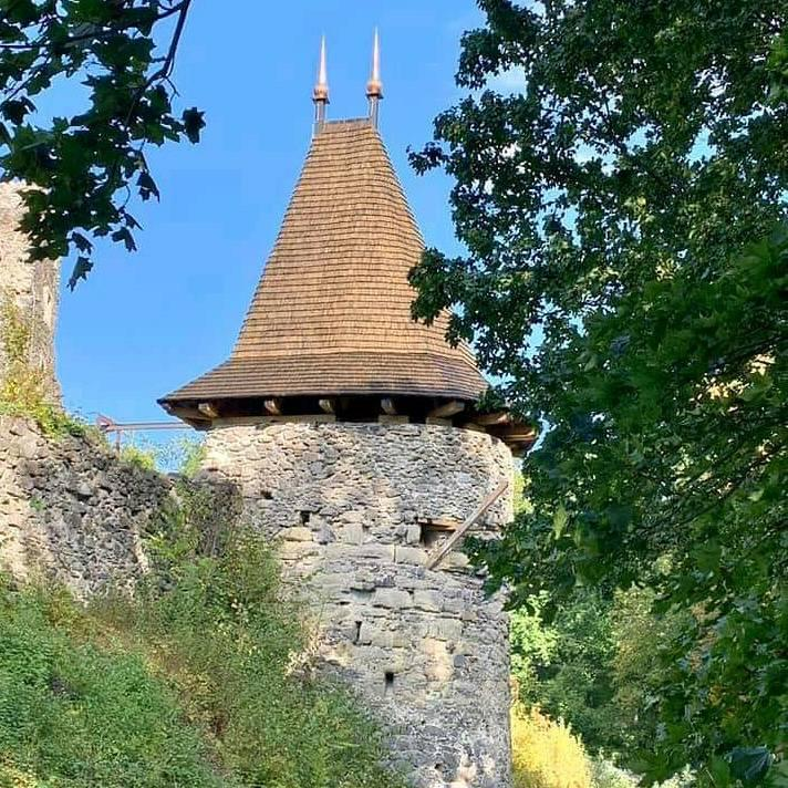 Проводиться реконструкція замку Невицький, який знаходиться поблизу села Кам'яниця Ужгородського району.
