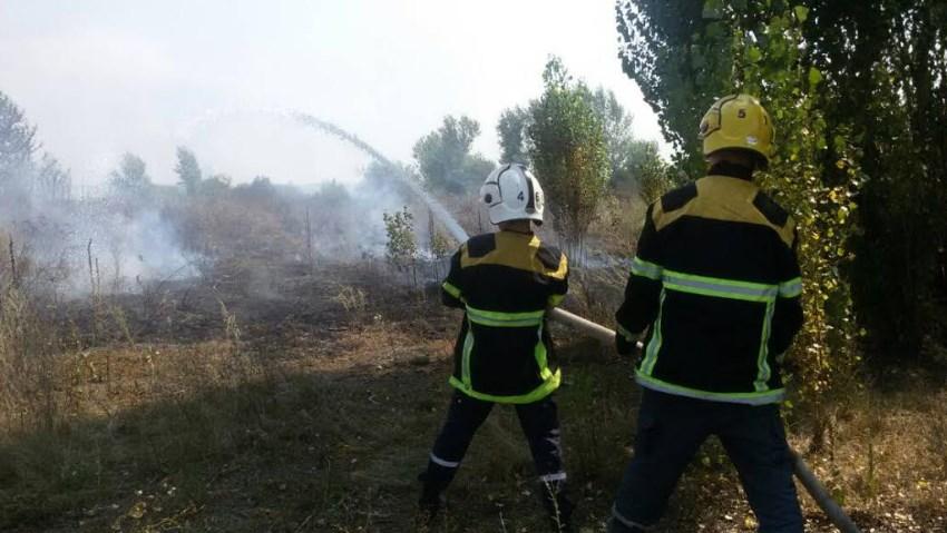 На Виноградівщині пожежники 4 години гасили пожежу сухої трави та чагарників