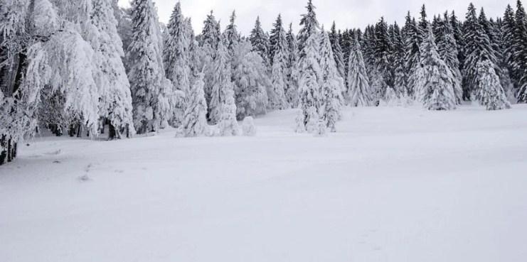 У четвер та п'ятницю, 28−29 січня, через сильні снігопади в Карпатах очікується сходження лавин.