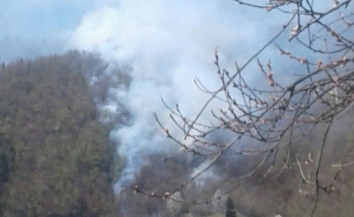 Зайнялися чагарники на околицях села Ділове на Рахівщині.