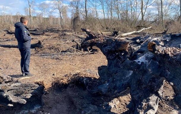 Закон встановлює заборону випалювання сухої рослинності в лісах, полях і біля водойм.