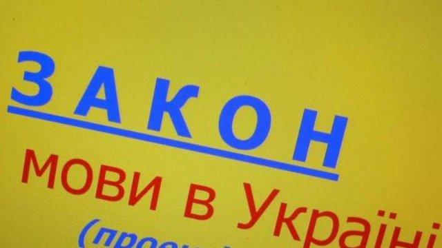 Українській владі пропонують переглянути закон про державну мову і підготувати закон про нацменшини.