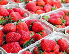На ринку в Мукачево вже торгують полуницею свіжого врожаю