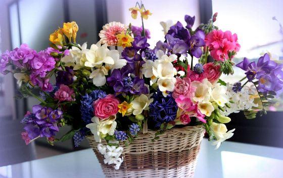 17 квітня народилась Філе Надія Михайлівна.