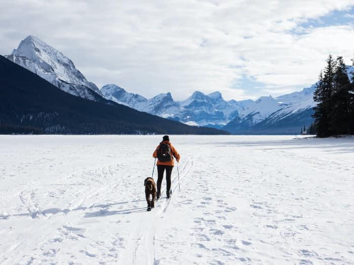 Двоє людей разом зі своїми собаками підіймалися в горах пішохідною доріжкою у долині Аверс, що у Швейцарії, як приблизно о 15 годині 30 січня сталось раптове сходження снігової лавини.