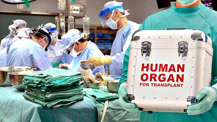 В Україні прийняли новий закон про трансплантацію органів.