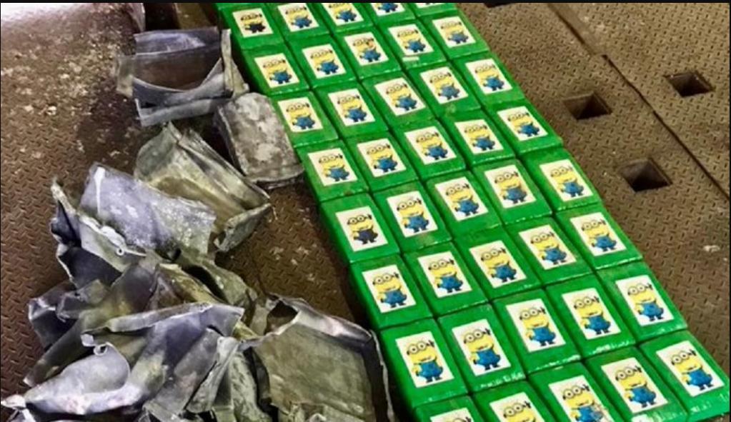 Лівий товар заховали в партії бананів, які морським шляхом доставляли в Україну з Еквадору.