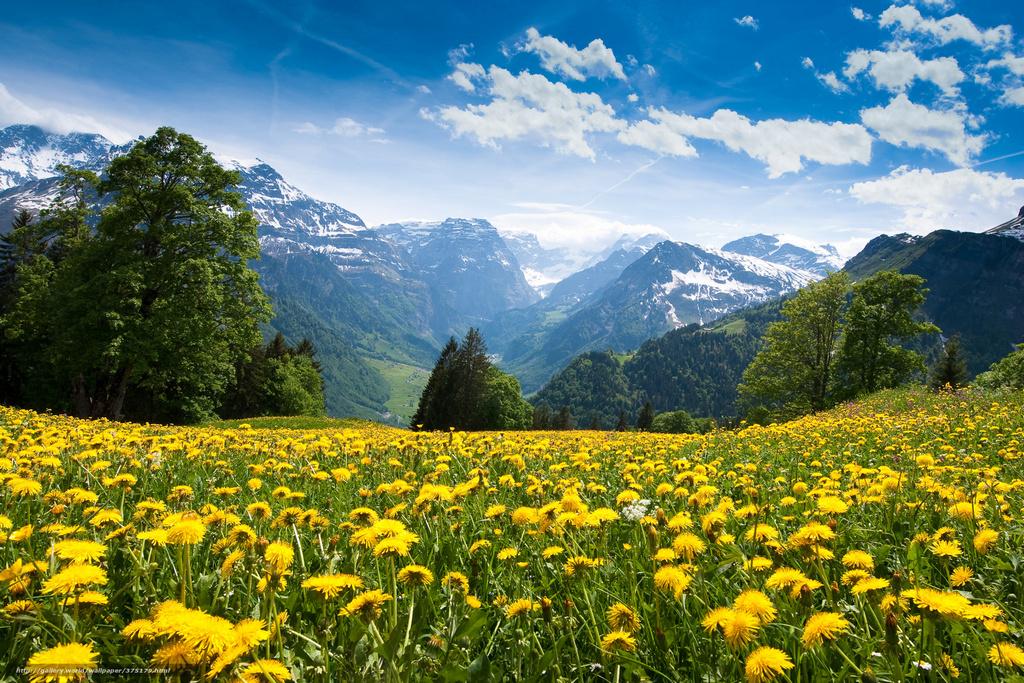 Температура повітря вночі 7-12°, вдень 21-26° тепла, в горах місцями вночі до 4°, вдень 15-18° тепла.