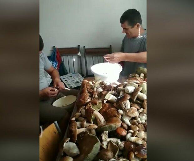 Закарпатці-заробітчани похизувалися у соцмережі Фейсбук грибним