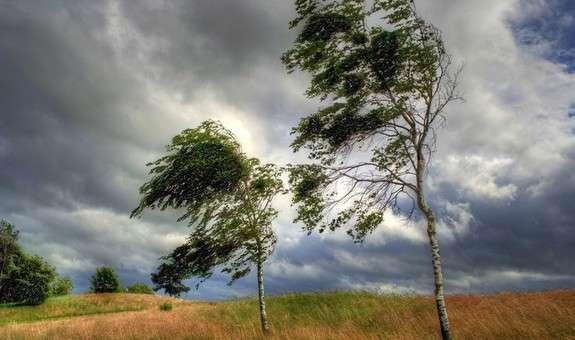 На високогір'ї вітер буде сильніший