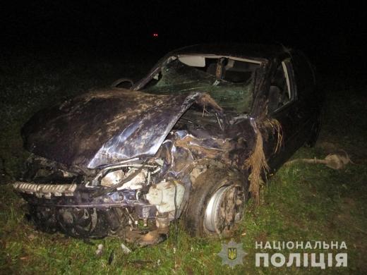 На Закарпатті ДТП: автомобіль збив коня (ФОТО)