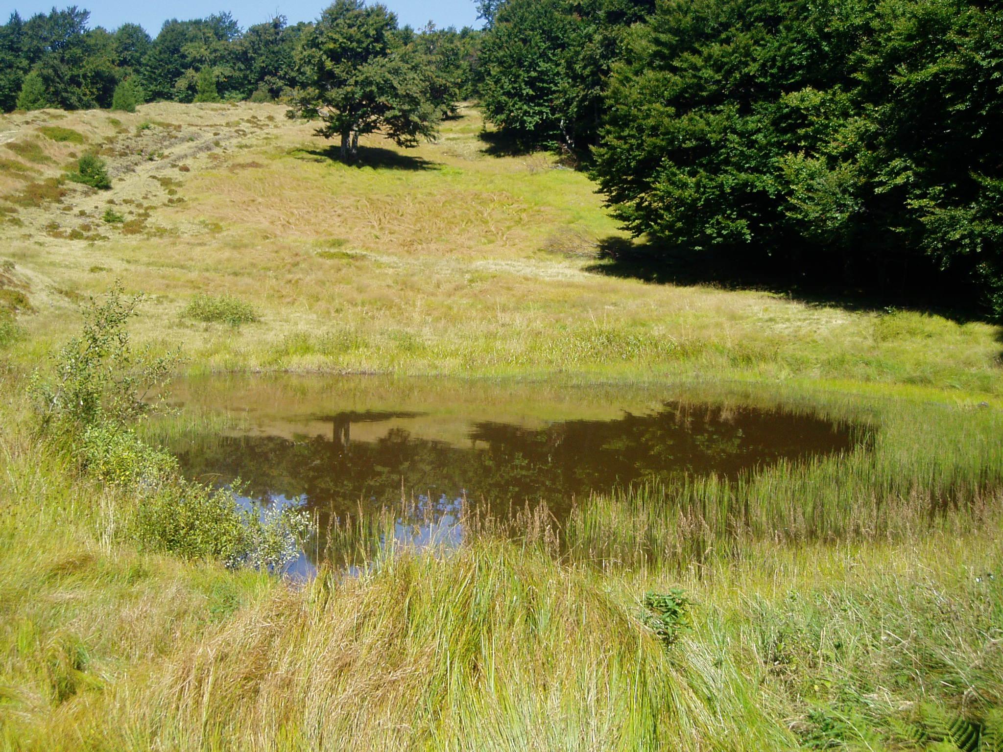 На Верховині є озеро босоркань
