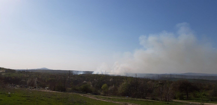 В селе Широкое вспыхнул лес.