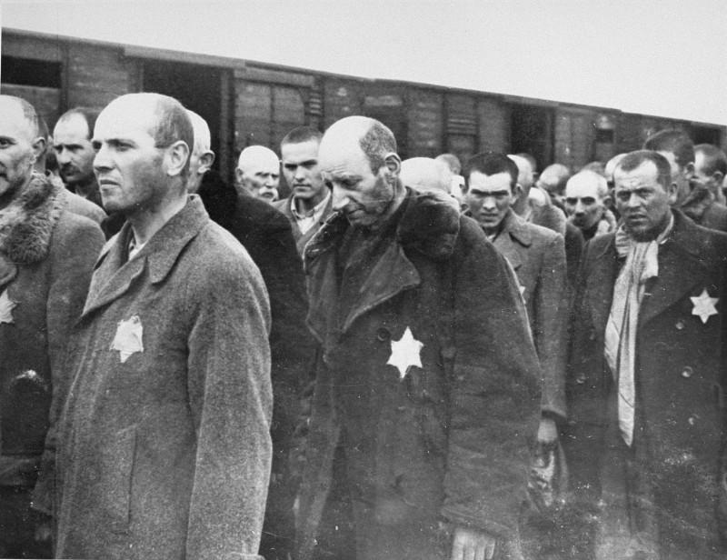 Весною 1944 р угорський уряд у співпраці з нацистами депортував євреїв Підкарпатської Русі (сучасне Закарпаття) в табори смерті. З більш ніж 100 тисяч людей не більше 10-15 тисяч пережили Катастрофу.